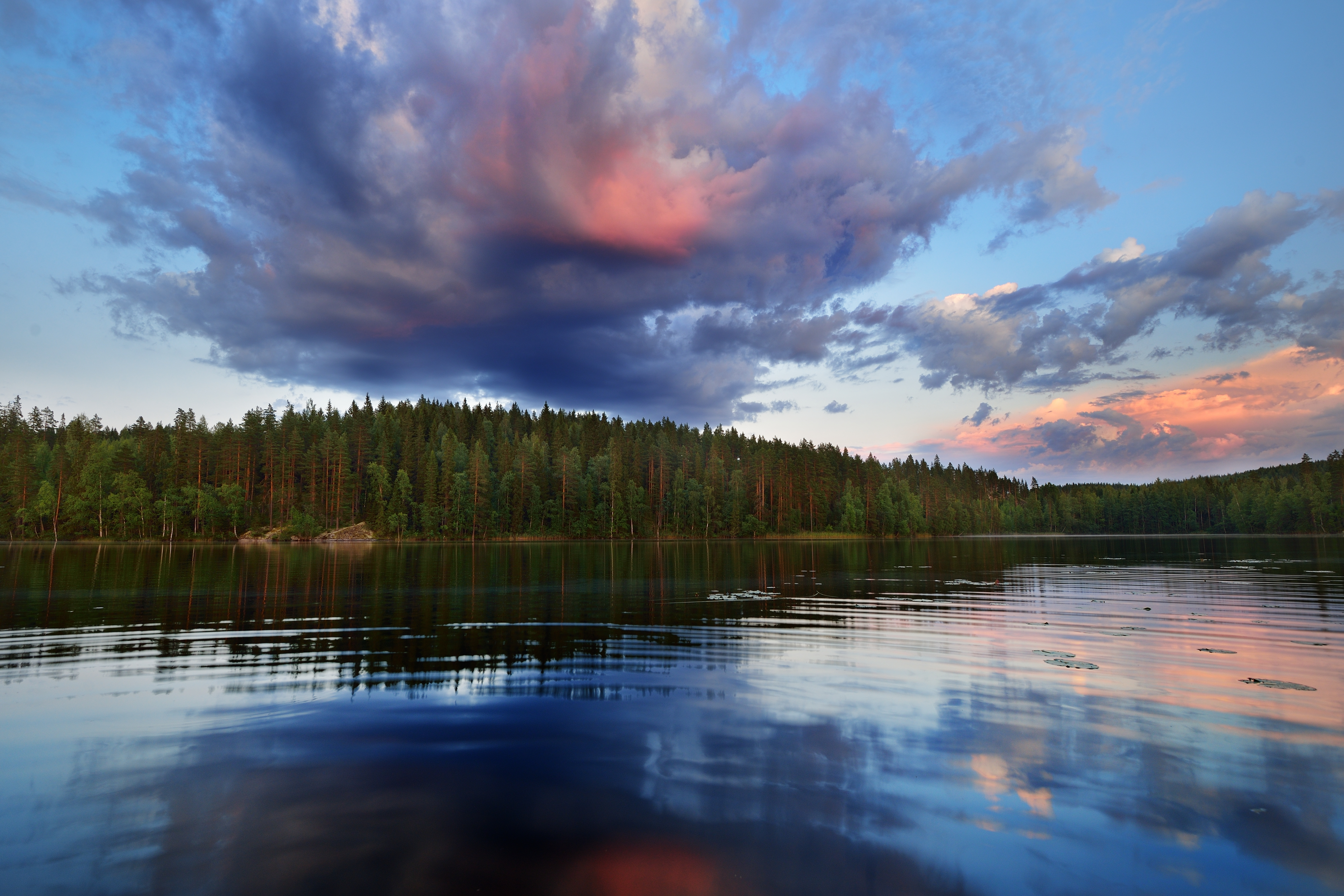 calm lake with forested shoreline and blue and pink clouds overhead
