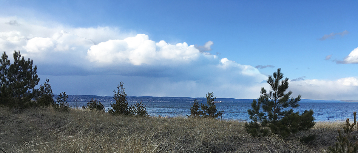 Dune grass, Lake Superior, Duluth on far shore, blue sky, clouds