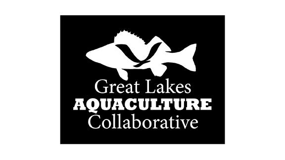 Logo with fish, gull, and the words Great Lakes Aquaculture Collaborative.